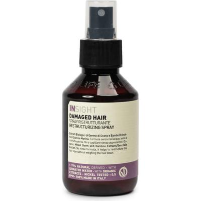 Damaged hair - Spray odbudowujący - Restructurizing spray Insight
