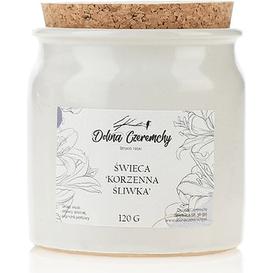Dolina Czeremchy Świeca zapachowa - Korzenne śliwki, 100 g