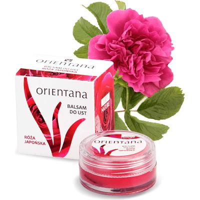 Balsam do ust - olejek z róży japońskiej Orientana