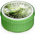 Świeca zapachowa: Balsam Fir (Delikatna Jodła Balsamiczna)