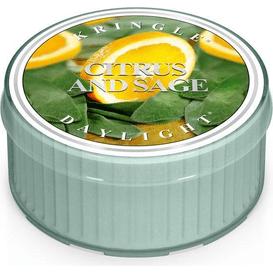 Świeca zapachowa: Cytryna i Szałwia (Citrus and Sage) / Kringle Candle