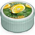 Świeca zapachowa: Cytryna i Szałwia (Citrus and Sage)