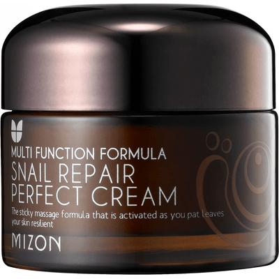 Naprawczy krem z Yam i śluzem ślimaka - Snail Repair Perfect Cream Mizon