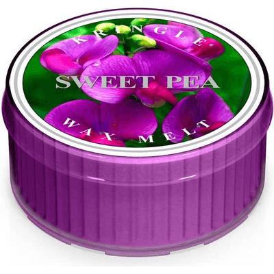 Świeca zapachowa: Słodki Groszek (Sweet Pea) Kringle Candle