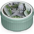 Świeca zapachowa: Eukaliptus i mięta (Eucalyptus Mint)