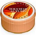 Świeca zapachowa: Touch of Autumn