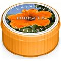Świeca zapachowa: Hibiscus