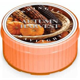 Kringle Candle Świeca zapachowa: Autumn Harvest